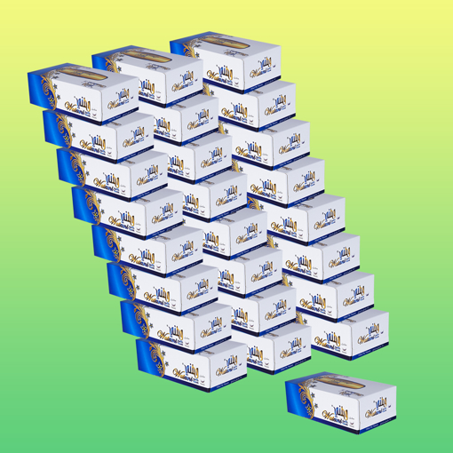 Picture of watani classic paper towels 100 x 2 ply 25 box