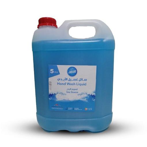 Picture of liquid hand soap